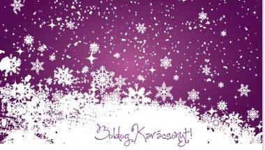 Karácsonyi Üdvözlet a Vannettől